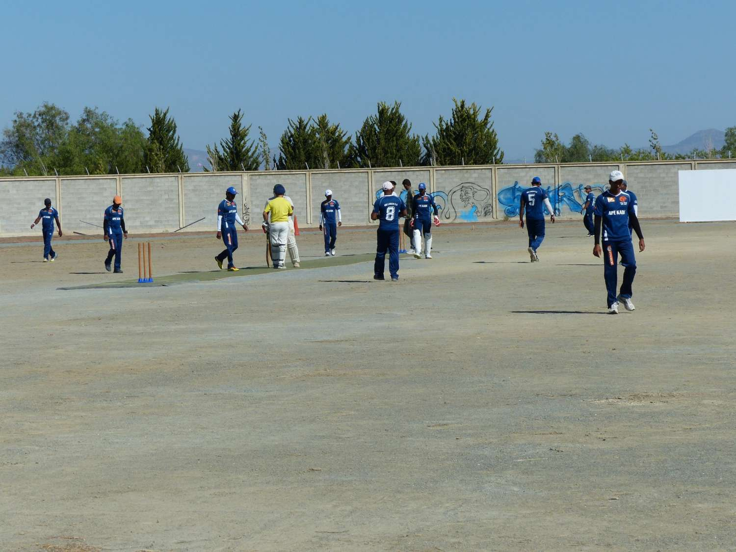 training-cricket-championship-l1060416
