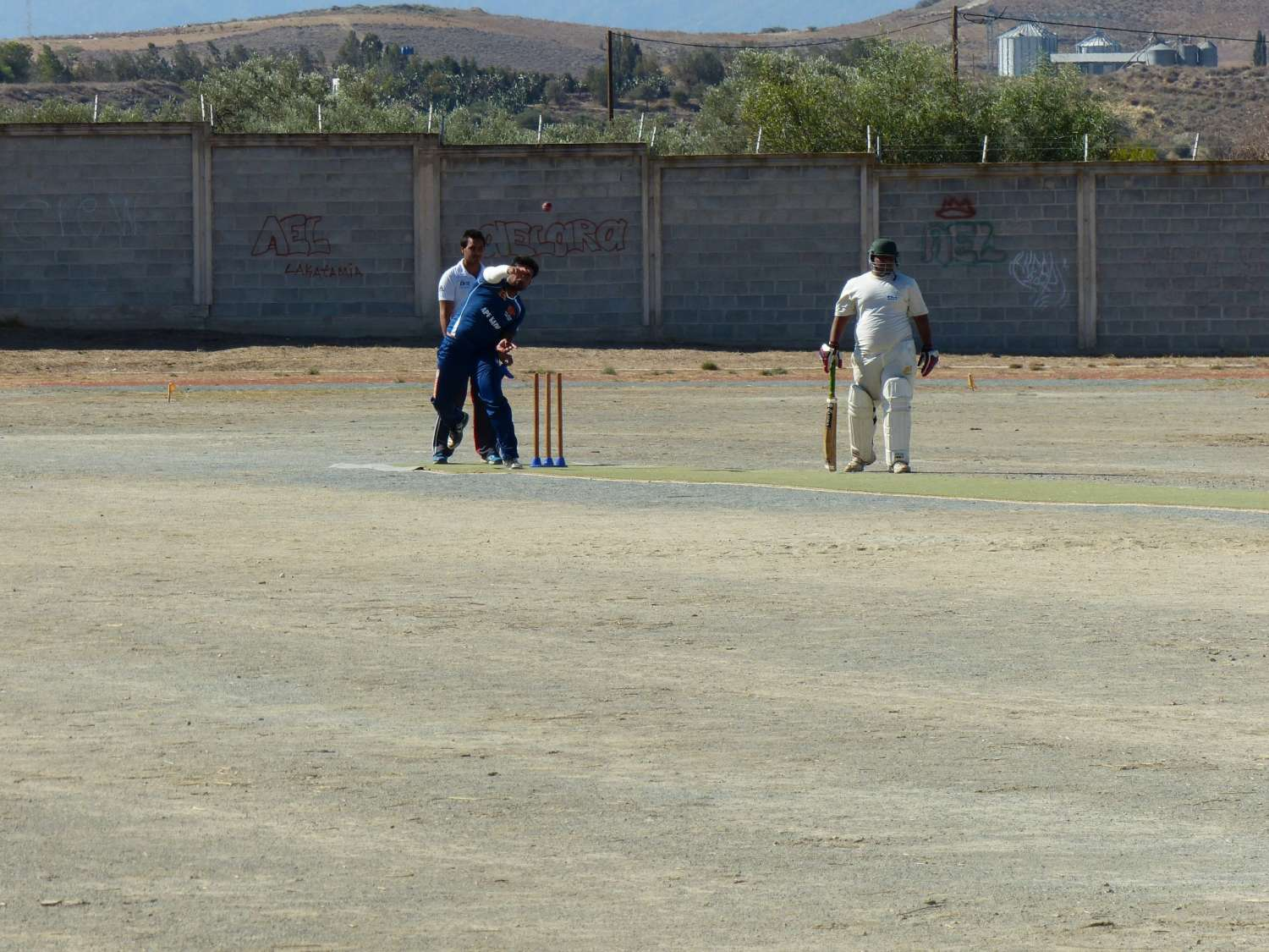 training-cricket-championship-l1060420