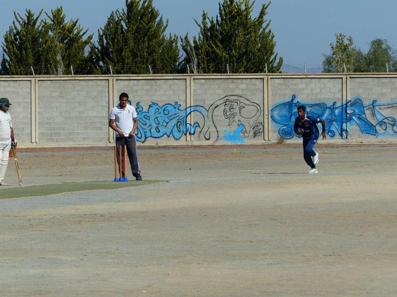 training-cricket-championship-l1060417